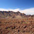 Stock Photo: Teide National Park.