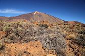 Vulcano monte teide. isole canarie, spagna — Foto Stock