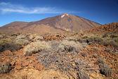 Teide, Tenerife, Canary Islands, Spain. — Stock Photo