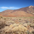Stock Photo: Volcano Mount Teide. Canary Islands, Spain