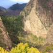 Mountain landscape of the island of La Gomera. Canary Islands. Spain — Stock Photo #45526417