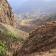 Mountain landscape of the island of La Gomera. Canary Islands. Spain — Stock Photo #45526553