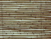 Bamboo pattern over sky — Stock Photo