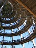 Wood spiral viewpoint — Foto Stock