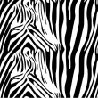 Zebra pattern — Stock Vector