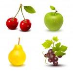 Fruit — Stock Vector