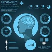 Head Infochart Infographic — Stock Vector