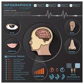 Head And Otolaryngology System Medical Infographic Infochart — Stock Vector