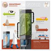 Gesundheit und medizinische hno-anatomie-infographik — Stockvektor