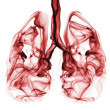 Stock Photo: Red smoke formation shaped as humlungs. Illustration of smokers lungs which could be used in non-smoking campaigns or lung cancer campaigns.