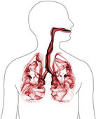 Red smoke formation shaped as human lungs — Stock Photo