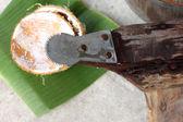 Coconut grater — Stock Photo