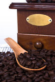 Roasted coffee beans in wooden spoon — Stock Photo