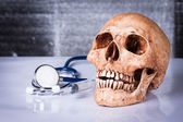Weathered human skull and stethoscope — Foto de Stock