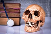 Weathered human skull and stethoscope — Stock fotografie