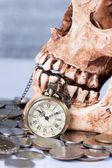 Pocket wach and human skull — Foto Stock