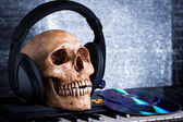 Human skull with earphones — Stock Photo