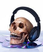 Human skull with earphones, still life — Stock Photo