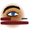 Makeup mascara — Stock Vector