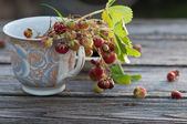 Wild strawberries  in the cup on the wooden backgraund — Stock Photo