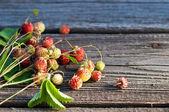 Wild strawberries  on wooden backgraund — Stock Photo