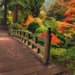 Bridge in autumn — Stock Photo