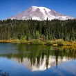 Mt Rainier with reflection — Stock Photo