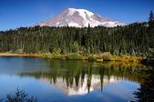 Mt ренье с отражением — Стоковое фото