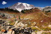 Beautiful Mount Rainier — Foto Stock