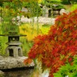 Beautiful Japanese garden in Autumn glory — Stock Photo
