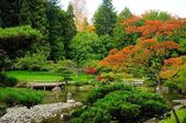 Assorted colors of the Japanese Garden — Stock Photo