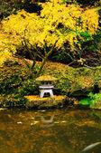Bahçe sonbahar renkleri — Stok fotoğraf