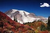 Autumn in Mt. Rainier — Stockfoto