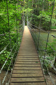Narrow foot bridge — Stock Photo