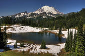 Mt Rainier and Tipsoo lake — Stock Photo