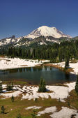 Mt Rainier over Tipsoo lake — Stock Photo