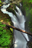 Sol duc Falls — Stock Photo