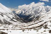Yumthang valley — Stock Photo