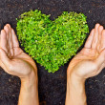 Hands holding green heart shaped tree — Stock Photo #39529931