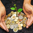 Hands holding tress growing on coins — Stock Photo #39660479