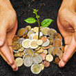 Hands holding tress growing on coins — Stock Photo #39660769