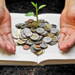 Hands caring tree growing from books with coins — Stock Photo #39727917