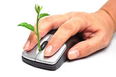 Hands holding a tree growing on a mouse — Stok fotoğraf