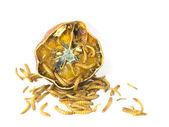 Robak pochodzi z rotten orange — Zdjęcie stockowe