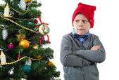 The boy decorates a Christmas tree — Stock Photo