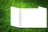Natuur groene achtergrond — Stockfoto