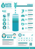Water and human body info graphic. — Stockvector