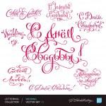 WEDDING greetings hand lettering set 3 (vector) — Stock Vector #50037785