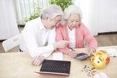 Coppia senior utilizzando il computer portatile — Foto Stock