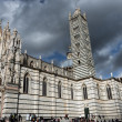 The cathedral of Siena — Stock Photo